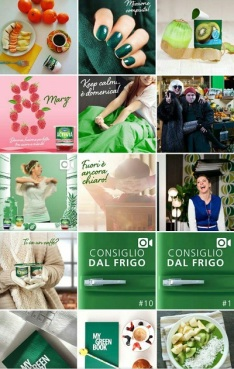 instagram marketing activia 2.jpg