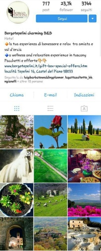 instagram marketing beb borgotepolini