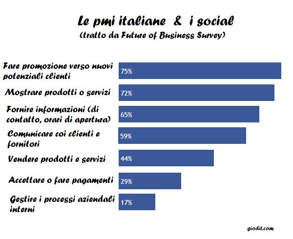 Le pmi italiane e i social: Future of Business Survey