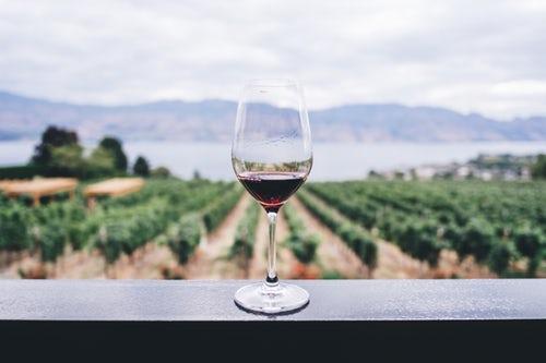 L_hackathon sul mondo del vino_ Millennials e vino su Instagram