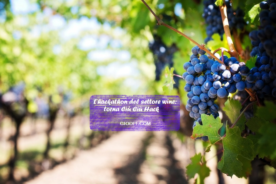 L'hackathon del settore wine: torna Ciù CiùHack