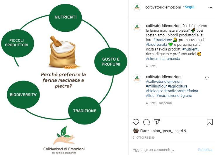 L'innovativa piattaforma di social farming: Coltivatori di Emozioni [Intervista]