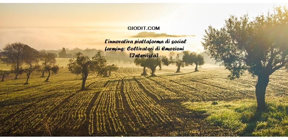L'innovativa piattaforma di social farming: Coltivatori di Emozioni[Intervista]